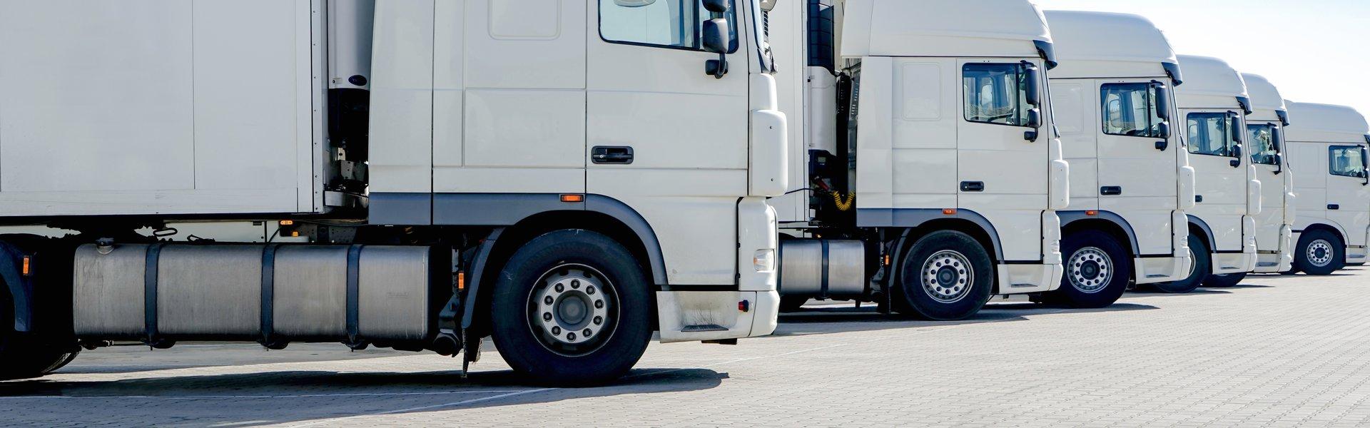 LKW-Spedition, mehrere weiße Laster stehen nebeneinander p557fr