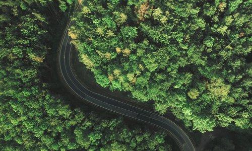 Transporte sostenible.jpg