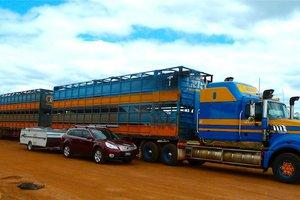 transporte-de-palets-por-carretera p511